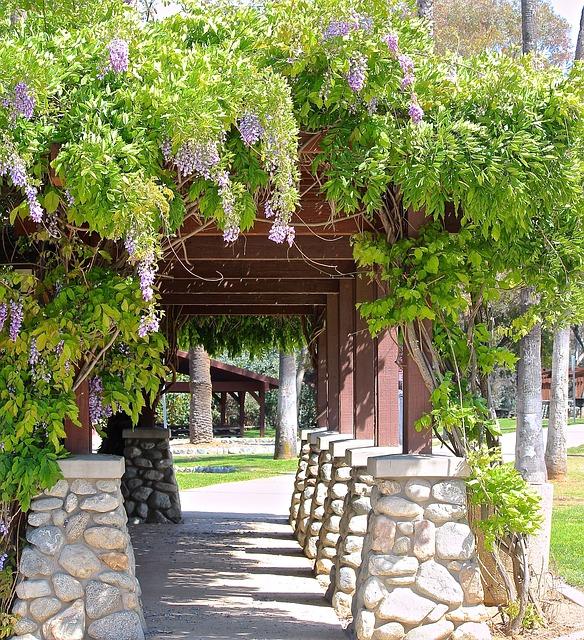 Ogrody dobrem kultury czyli pielęgnacja ogrodów