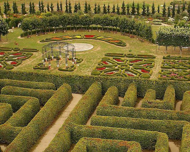 Projektowanie ogrodów było wykorzystaną przeze mnie usługą
